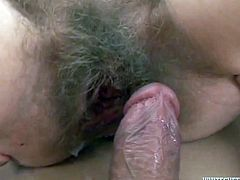 Hairy pussies take cumshot shower in compilation sex movie