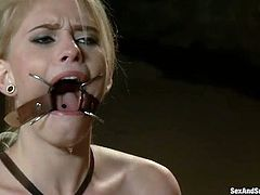Submissive fixed with ropes auburn Allie James gets teased in BDSM way