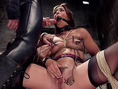Slutty Rilynn has to endure a rough treatment, in order to become an obedient sex slave... The helpless bitch wears a ball gag, which is removed only, when the dominant guy desires to mouth fuck her. Clothes pins are also part of the accessories used to arouse her.