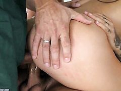 Aletta Ocean enjoys another anal sex session