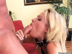 Sindee Jennings spends her sexual energy with dudes hard meat pole in her wet hole