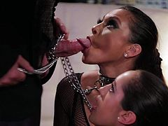 Two obedient dark haired babes on a leash Adriana Luna and Chloe Amour fulfill his dirty fantasies. Leashed ladies in black give blow job on heir knees in kinky threesome.
