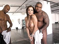Rico Strong uses his hard ram rod to bring blowjob addict Francesca Le to the edge of nirvana before she gets fucked in her butt