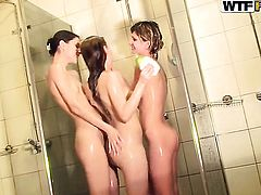 College students in a threesome