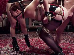 Slutty Aubrey has no way to escape, as she has been strongly tied up with inescapable ropes. She is wearing a kinky ball gag. The busty blonde milf, Aiden, makes her slave obey every wish... See the helpless babe getting pounded hard from behind!