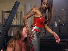 This ebony tranny makes her male slave like her bulge through her tight pants, and when she strips down to her fishnets stockings, she shoves her hard penis into his mouth. Honey wants her blindfolded slave to suck her until she cums.