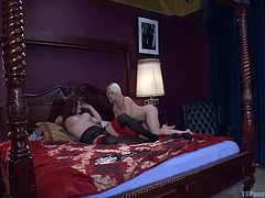 A naughty blonde has climbed over the billiards table, driving sexy Tiffany Star really horny, as she shamelessly exposes her lovely buttocks with generosity. Click to watch the charming redhead shemale laying in bed, while busty Nikki undresses with lascivious movements, preparing to ride her cock.