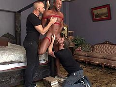 A muscular stud has been tied up by two horny gay guys. When he gets to see them, he obeys and kisses the dominant man with red beard. Click to watch him tortured and awfully used, as pain mixes with the kinky pleasure, produced by an inciting blowjob!