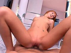 Ginger is a 19year old redheaded cutie with small tits and a shaved pussy. Shes determined to become a porn star and shes starting with her first audition today. Ginger shows off what shes got and then brags about her talented pussy by opening her legs wide and hopping on a nice hard dick. Ginger rides it hard until she gets her face under the director and takes his load in her mouth.