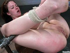 Nicole is not an innocent girl at all! This naked bitch has been bonded with strong ropes by a gang of horny guys, that have fun with her in the dirtiest of ways... Click to watch the slutty babe, getting her ass fucked hard. Enjoy the hardcore spicy moments!