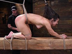 Serena is hogtied and humiliated in the most shameful way. The master slaps her feet and smack her ass hard, until it is sore. How much more can she handle? She moans loudly. It hurts, but she actually likes it.