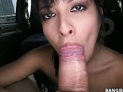 Brunette sucking dick in a car