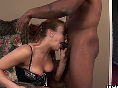 Gabriella has been wanting some chocolate dick for a while, so she invites this guy over, to get deep inside of her. She greedily gobbles his black knob, making him stiffer than he has ever been. He appreciates her by tonguing her wet ginger snatch, after she spreads her creamy legs wide for him.