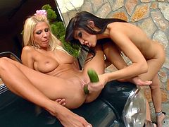 Mya and Clara are having some girl-on-girl playtime together. Clara is a bit freakier than your average slut. She has a big cucumber, but she's not making a salad with it. She's using it to fuck her pussy, stretching it, to prepare herself for Mya's fist to go deep inside her aching wet hole. Amazing!