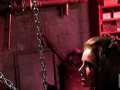Tori Black gets her throat stuffed full of love stick in dick sucking action with hot bang buddy