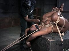 Come and see how I wet the fucking machine with my cum, as I was tied up in a hard way. It is a good thing that I was gagged, or else you would hear me scream out of pleasure. Although I have to admit, that it hurt my huge tits, as the rope was tightened. I bare the pain because it only made me horny.