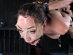 Lily has a ball gag in her mouth, clamps on her nipples and is suspended in midair by chains and straps. Her executor has his gloves on and fingers her pussy somewhat. Suction pumps go over her tits next, followed by more manual stimulation by his talented fingers. Will she be allowed to cum?