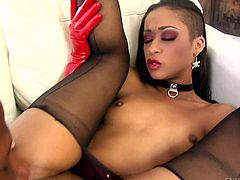Tattooed ebony Skin Diamond in black pantyhose and red gloves spreads her legs and gets her cunt drilled by big black cock by the fire. Prince Yahshua loves fucking her tight hole.