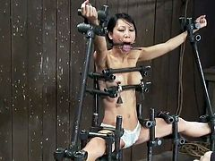 Sleaze Chinese slut Tia Ling constrained And Tortured inside masochism Vid
