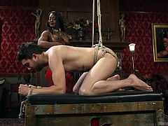 When i visited my Dominatrix, she knew how much i love being tied up and taken from my ass hole. I submitted myself to her and she took me in my wildest fantasy, tying me up and fucking the shit out of me.