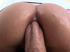 Gorgeous slut with a nose ring ass fucked in close up