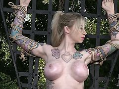 With huge jugs puts on a solo show you must see