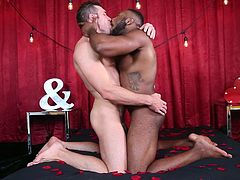 I always dreamed of getting fucked by a big black guy. Just the thought of a big black penis penetrating my tight pink asshole drives me insane. So you can imagine my happiness, when I found myself in front of a hunk with a big black cock, waiting for me to suck it right down to the balls!