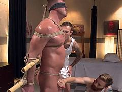 Josh is being tortured in a way, and he is just as much in agony, as he is ecstasy over it. Tied and blindfolded, he feels his lovers greasing him up with oil and taking turns stroking him to nearly the point of orgasm... just before stopping! How cruel!