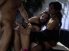 Renae Cruz cant resist guys stiff meat pole and takes it in her mouth