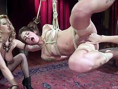 Hanging in the middle of the room, totally naked and tied with ropes, Kacie Castle has no chance to escape from her two lesbian punishers. Cherry and Cadence are both horny and craving for fresh flesh. While blonde busty milf lashes Kacie's body with a whip, Cadence penetrates her pussy with fingers. Hot!