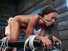 Tied ebony babe Chanell Heart, gets her pussy stimulated and penetrated with special electric rod. Attached to a bondage device, she has no way to escape and should to obey her busty mistress's wishes. Interracial lesbian domination, real shocking and real orgasms. Enjoy!