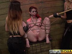 Alexa and Mila are showing Sheena that this is not a game. This is not playful. This is hardcore fucking. They gag her with strap-ons, then gag her with a gag, all while she's tied up with ropes. They get out the dildo on a stick, to ram in her pussy.