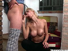 Barbara Perez is a shemale thief. She had no idea that one of her robberies is about to turn into something totally different. Alex, the house owner, caught her downstairs and threatened to call the cops. Barbara had no choice but to suck his dick, as a way to get out of trouble.