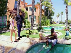 a hot holiday with blondes fucked by big black dicks