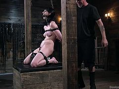 Bondage and domination is not always about causing pain to the submissive. Sometimes, too much pleasure can be just as torturous. Alex Harper is finding this out now, as her executor has her bound and gagged, and straddling a sybian.