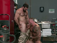These manly hunks love to get intimate with each other. The hunky dude drops down on his knees and sucks off his lover. He sticks those balls in his mouth and licks every inch of that nutsack. The hardcore American men are strong gay studs.