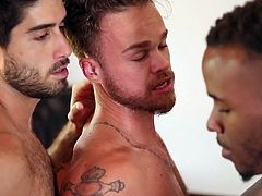 He is stuck between two hunks and fucked hard. One dude is ramming his big dick into his tight asshole, while he chokes on the other dude's big black penis. This is a hot gay threesome you need to see right away.