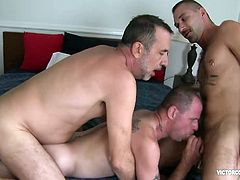 Ethan Palmer invites his buddy Danny Dickers over to have dinner with him and Victor Cody. While Victor is making Dinner, Danny enjoys going for Ethans cock under the kitchen counter. Once alone, in Ethans room, the clothes strip off and cocks come out. Danny sucks and gags on Ethans hard dick, as Ethan feeds him balls deep.