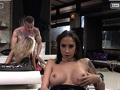 This time we are proud to present you Rocco's Live Show. Malena, Joanna Bujoli and Megan T are here for your viewing pleasure, ready to offer you their wet pussies, tight assholes and much more. Relax and enjoy impetuous sex action!