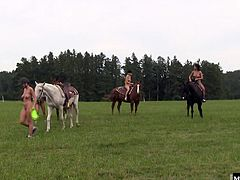 Watch them get physical after a relaxing day out riding their steeds.