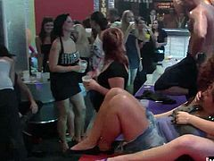 Brunette letting her big tits bounce while a male stripper is behind her, holding her big soft bubble butt, while banging her box from the rear. Next to her is a natural boobed blonde, letting a guy fuck her mostly shaved snatch, while two lesbians are going at it next to them.