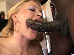 Krissy Lynn has a huge tits and a big butt that she knows how to use to get what she wants Watch as she rides the Black assassins dick like a sex deprived orgasm junkie until she gets his cum all over her lips and tits