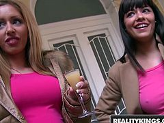 RealityKings   Euro Sex Parties   Ava Dalush James Brossman Melanie Gold Tony   So Yummy