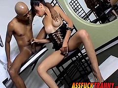Beautiful ladyboy Laisa Lins enjoys being ass fucked hard