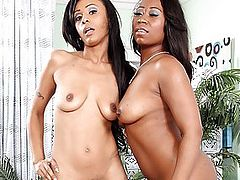 Beautiful Black Lesbians Toy Their Tight Little Cunts
