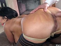 Black haired babe ass and pussy banged
