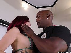 Hot blooded black guys drill all holes of nasty blond chick Amber Ivy