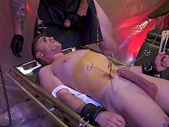 Trenton really gets into the dominator role. Tom is somewhat new to this, and he realy feels the heat. After getting Trenton's cock shoved in his mouth, he's bound on his knees, arms to the sky, and ass exposed. The muscular, masked hunk mercilessly whips him, making him tender for what's to come.
