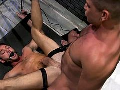 Dominic bound his victim, even though they are behind bars, in prison and Max Adonis will not be able to escape. Dominic's big dick is hard enough and is ready to penetrate his sex slave's tight asshole. Let's join and enjoy!
