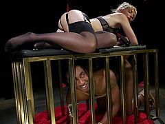 Mona Wales is one cruel mistress, who loves to dominate and humiliate submissive men. Watch this majestic lady in kinky lingerie and stockings, hunting for the tight butthole of her chocolate minion. Caged and blindfolded, the black man has submitted himself to the domina and...